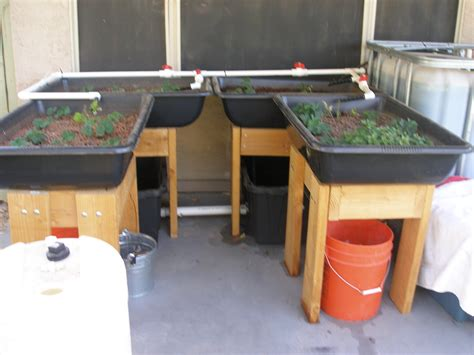 aquaponic grow beds 301 moved permanently