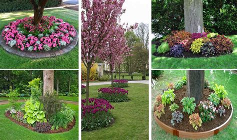 flower beds around trees 18 genius flower beds around trees you need to see the