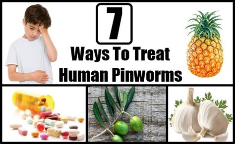 7 ways to treat human pinworms home remedy for pinworms