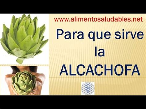 layoutinflater para que sirve para que sirve la alcachofa youtube