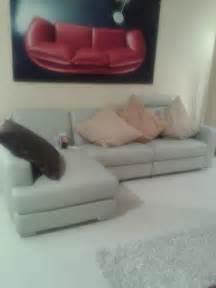 polo divani prezzi polo divani sofa idee per il design della casa