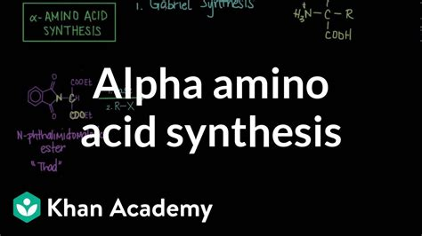 alpha amino acid synthesis chemical processes mcat khan academy youtube
