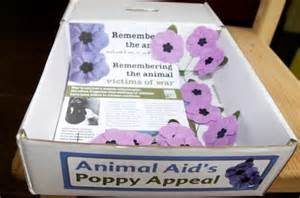Armchair Purple Purple Poppy Appeal Remembering The Animal Victims Of War