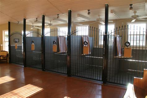 best kennel best 25 indoor kennels ideas on indoor rooms spaces and