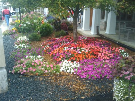landscape building residential landscape design jacksonville florida obituaries