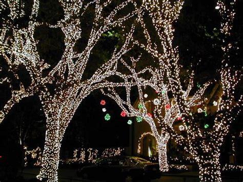 where to view christmas lights in dallas dallas socials