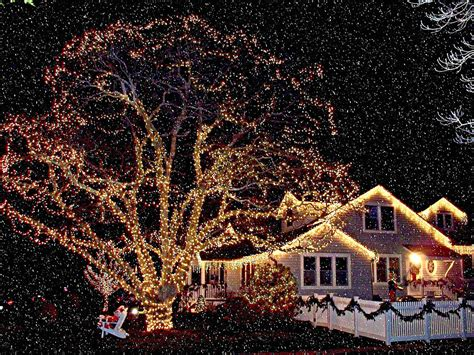 christmas snow lights www pixshark com images