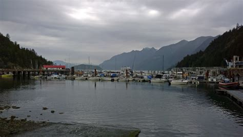 sewells boat rentals riding speed boats in horseshoe bay of west vancouver