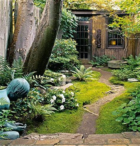 Shady Backyard Landscape Ideas Back In The Woods A Tree Has Been Pruned So Just Enough Sunlight Penetrates The Canopy