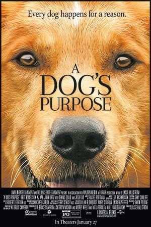Seattle Contests Giveaways - a dog s purpose portland seattle screening contest and giveaway
