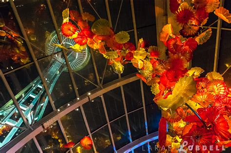 Chihuly Garden And Glass Hours by Photo 5 Hours With Julie Danforth At Metropolitan