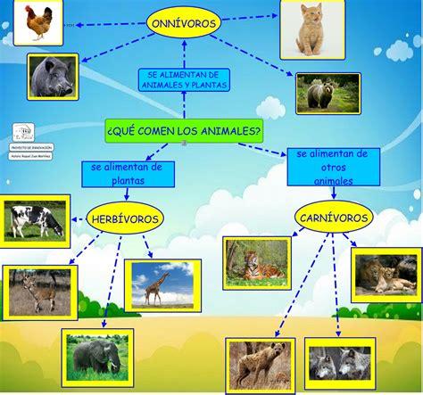 que comen las hadas que comen los animales qu 201 comen los animales