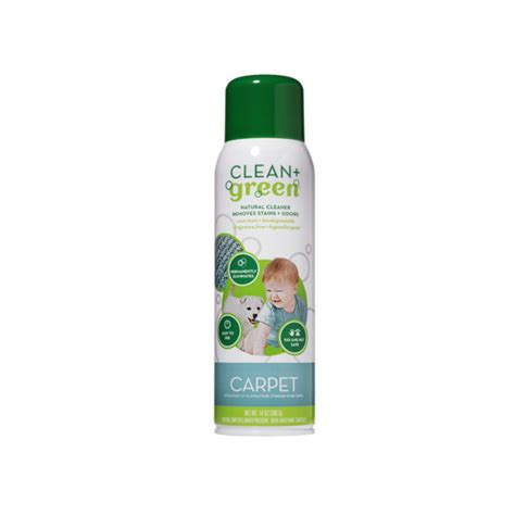 green upholstery cleaner clean green carpet upholstery cleaner cardy vacuum