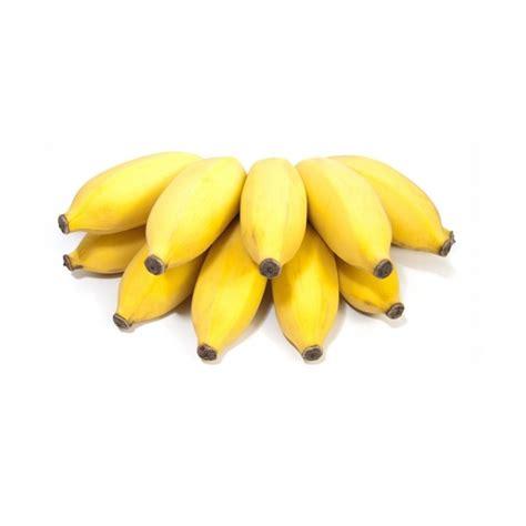 tiny banana small yellow bananas