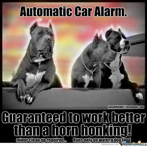 Pitbull Memes - pitbull car alarm by spacinjason meme center