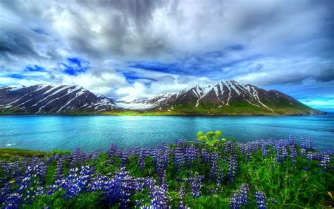 nature beautiful hd wallpaper mountain lake flowers sky