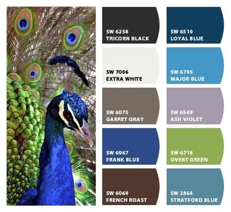 25 best ideas about peacock paint colors on teal paint colors peacock blue paint