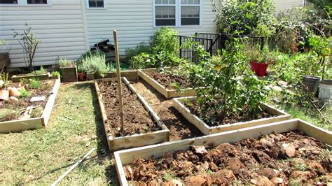 designing  raised bed vegetable garden  fall makeover