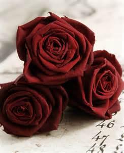 Burgundy rose heads extra fancy 6 flowers