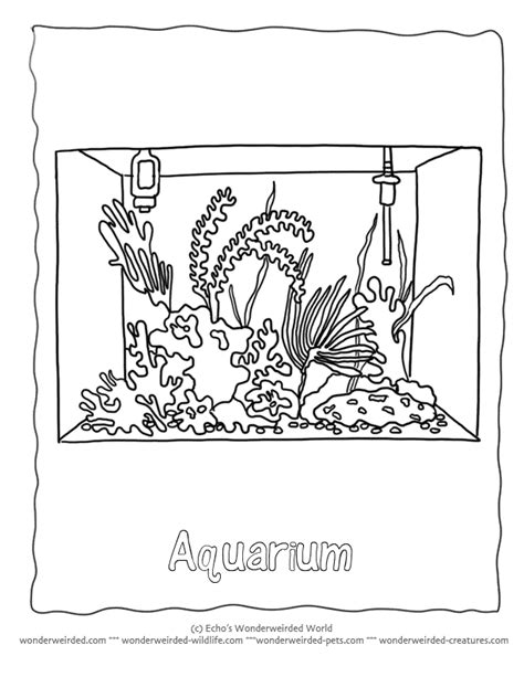coloring pages fish tank fish tank coloring page coloring home