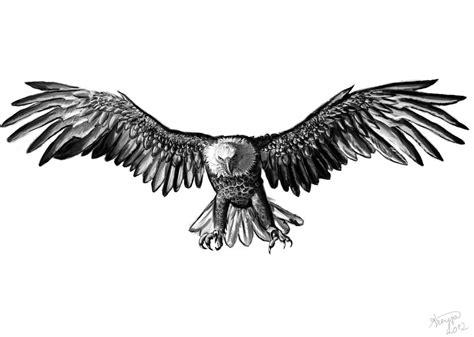 eagle by x celebril x on deviantart