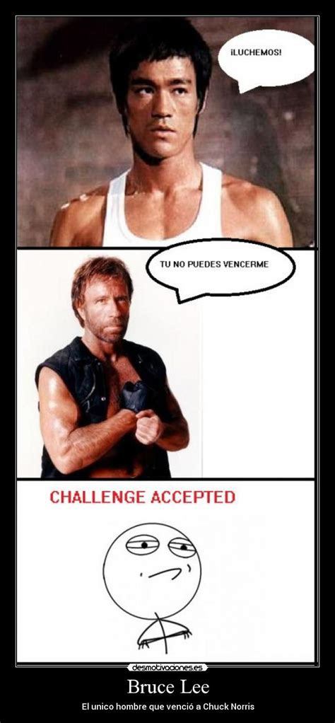 Bruce Lee Meme - chuck norris and bruce lee memes www imgkid com the
