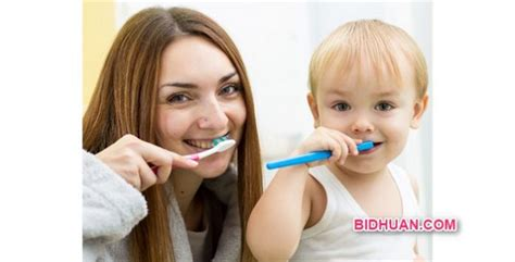 Berapa Untuk Pemutihan Gigi berapa lama waktu ideal mengganti sikat gigi yuk cari tahu berbagi opini edukasi dan