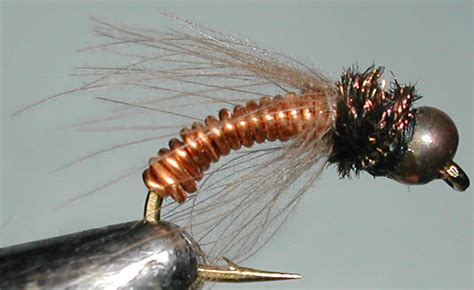 black nymph pattern metallic caddis copperbead copper trout fly pattern