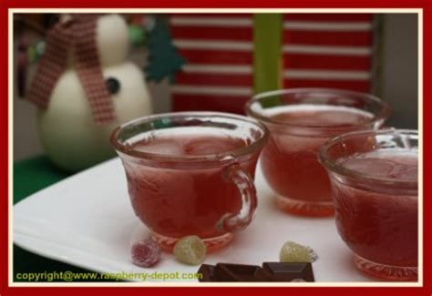 non alcoholic punch recipes for bridal shower best raspberry punch recipes for weddings showers