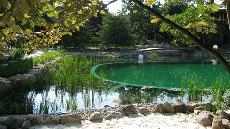 Natural Pool by Natural Swimming Pool With Aquarium Filtration Okeanos