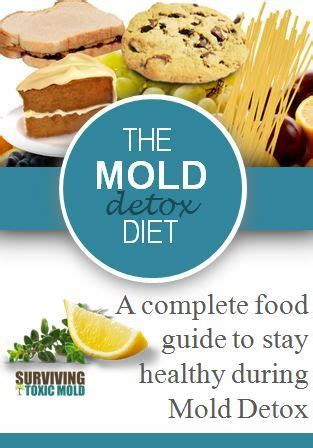 The Mold Detox Diet 25 best ideas about mold allergy on mold