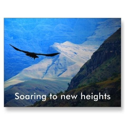 13 best images about soaring to new heights on