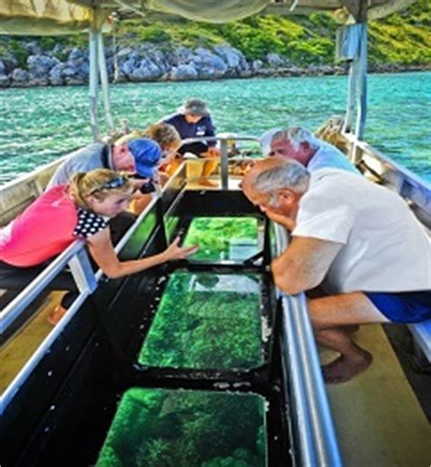cairns glass bottom boat reef tours cairns cruise ships 3 4 7 day ultimate expedition