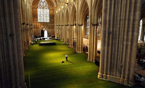york home design abbotsford york minster cathedral interior covered in grass