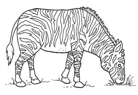 imagenes animales salvajes para imprimir plantillas con dibujos de animales salvajes para colorear