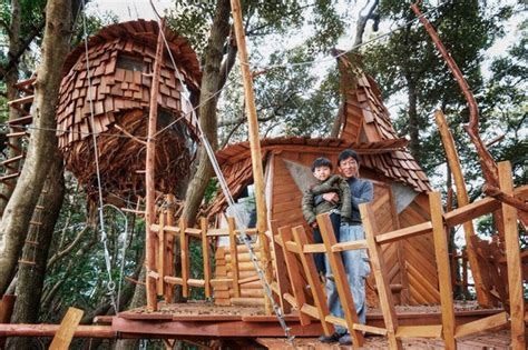 airbnb tree house best airbnb property in the world you can now rent an entire island with a zipline