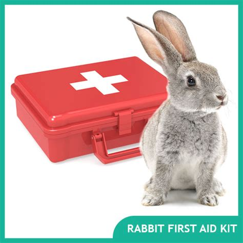 Travel Kit Rabbit rabbit supplies cages and accessories animal supplies