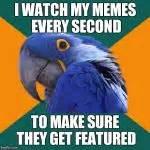 Macro Meme - paranoid parrot meme generator imgflip