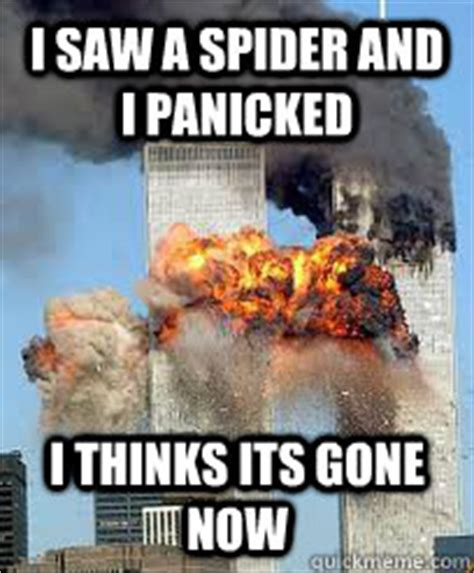 I Saw A Spider Meme - giant huntsman spider memes