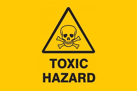 my toxic detoxify your home one room at a time the holistic
