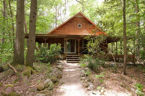 Cabin Rentals In Cosby Tn by 89 Best Images About Smoky Mountain Falls Cabin Rentals In