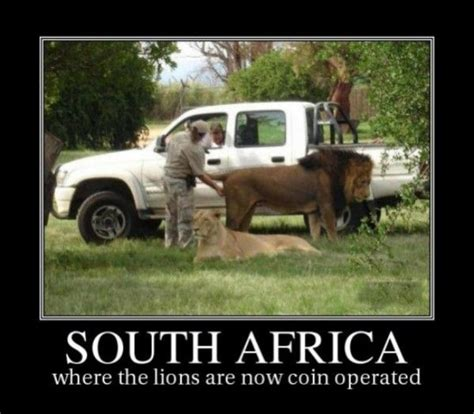 Africa Meme - south african memes image memes at relatably com