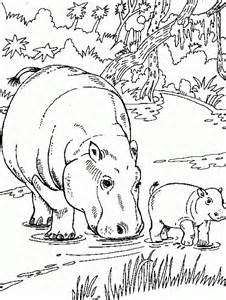 hippo coloring pages free printable hippo coloring pages for