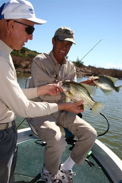 arizona crappie fishing   outdoor az fun