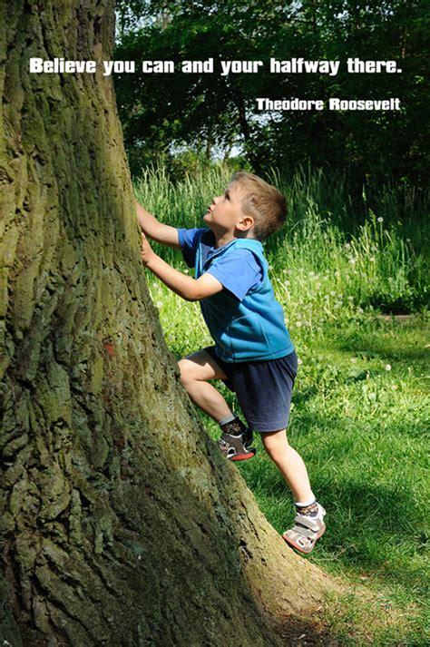 boys tree tree climbing quotes quotesgram