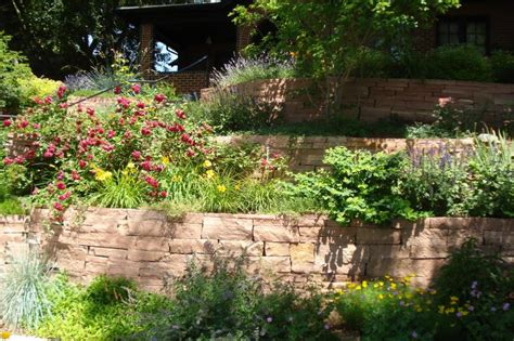 denver landscape design landscaping denver irishman