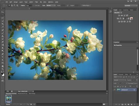 photoshop cs6 full version crack free download esesex adobe photoshop cs6 v13 0 pre release with keygen