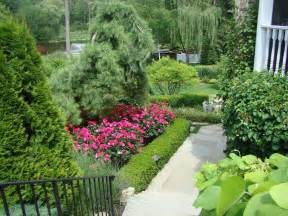 landscaping landscaping ideas knockout roses