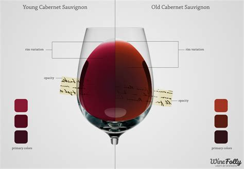 Wine Colored by Learn The Secrets Of Each Wine Color Wine Folly