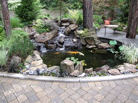 backyard koi ponds backyard koi pond pond gardens pinterest